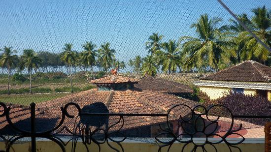 Coconut Grove: widok z restauracji sniadaniowej