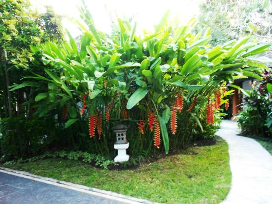 Candi Beach Resort & Spa: Lovely Garden