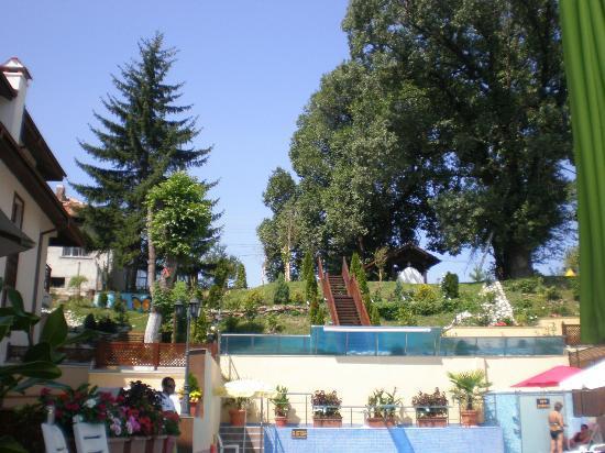 Aquilon Residence & Spa : Pool surrounding