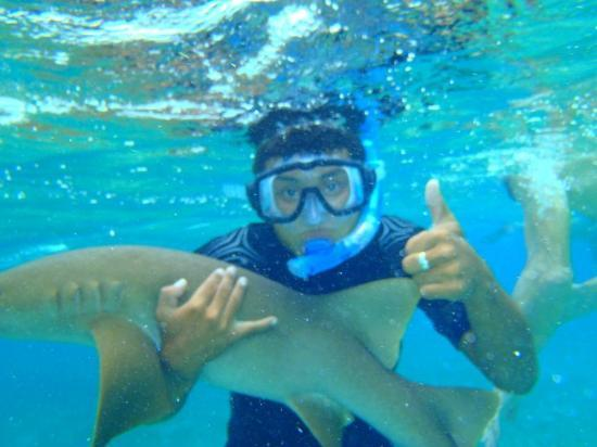 Hicaco Tours Snorkel & Dive: Snorkelling with Hicaco Tours