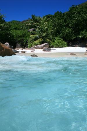 Anse Lazio : acqua cristallina
