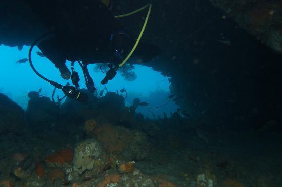 Cabrits Dive Centre: Swimthrough