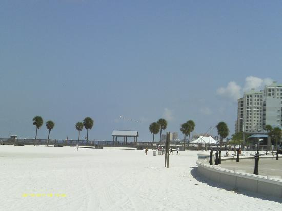Clearwater Beach: lovley clearwater