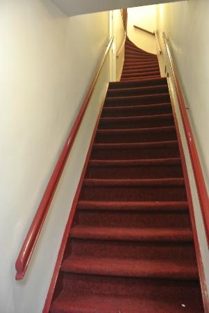 Amigo Budget Hostel: Steep stairs to the room