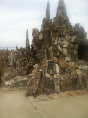 Petrified Wood Park: tons of petrified wood. all local