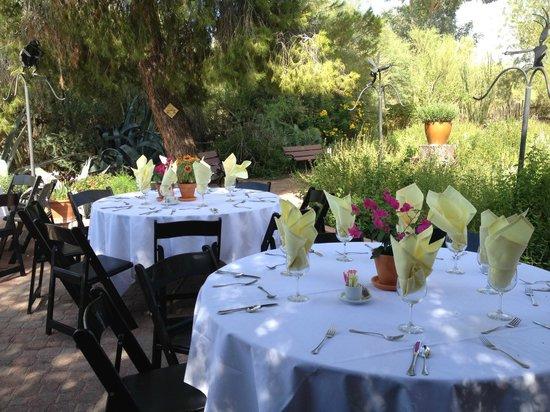 Wedding reception on the Hummingbird Patio Picture of Tohono