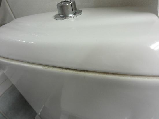 Sol Aurora: Dettaglio vaschetta acqua water