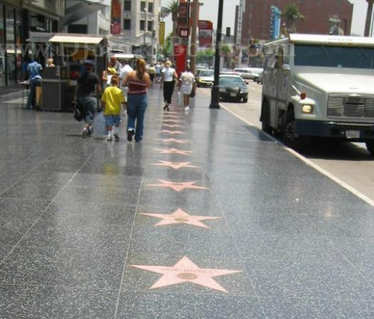 A Day in LA Tours: stars