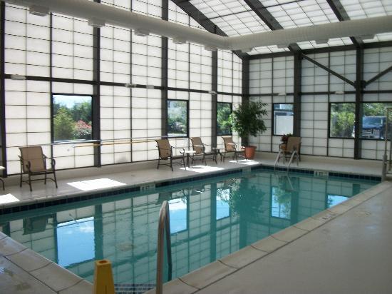 Hampton Inn Long Island/Islandia: The indoor pool