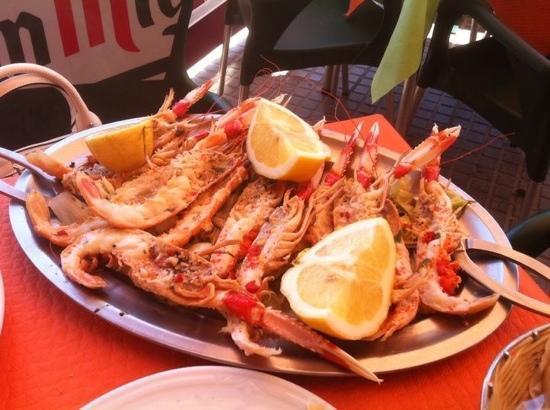 Marisqueria el Kaoba: Cicalas.......Scamponi!!!