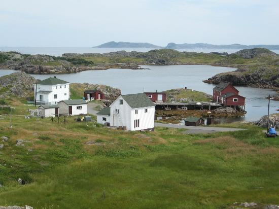 Seven oaks picture of seven oakes island inn cottages for Cabins in newfoundland