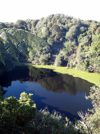 Elite Adventures Rotorua Tours: Rotorua