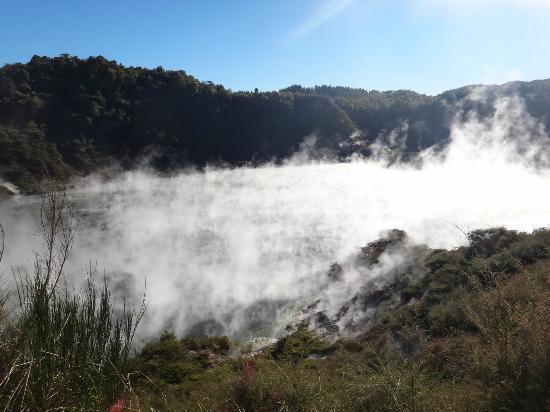 写真Elite Adventures Rotorua Tours枚