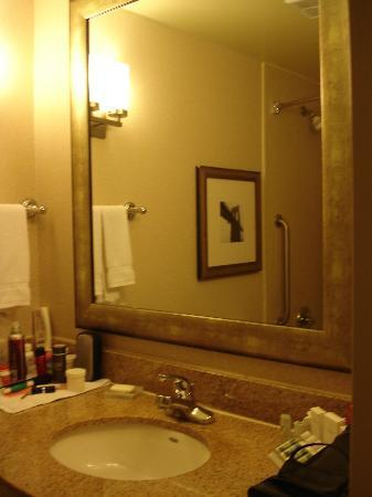 Hilton Garden Inn New York/Tribeca: bathroom