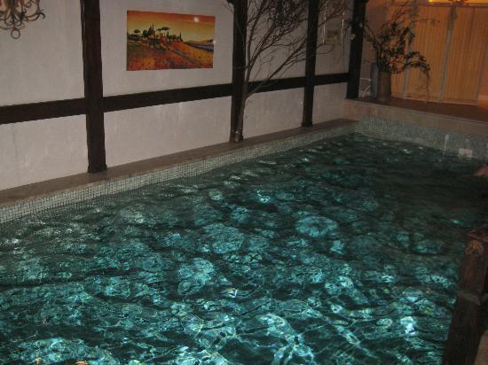 Hotel Am Rehberg: das Schwimmbad