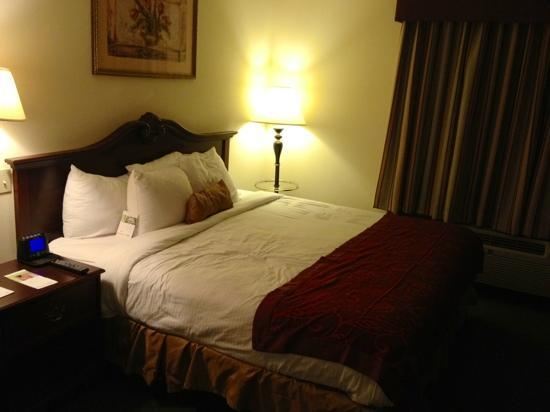 Wingate by Wyndham Atlanta Galleria Center: king size bed