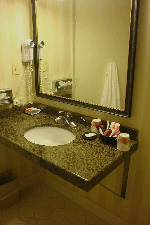 Ramada Plaza Hagerstown: Modern Bathroom with Granite Counter Tops (very clean!)