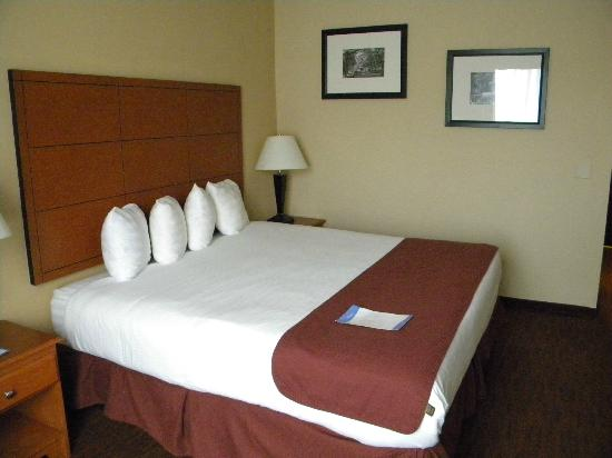 Baymont Inn & Suites Savannah/Garden City : Bedroom
