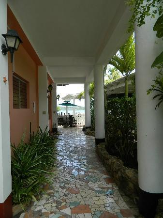 The Catamaran Hotel: Hotel grounds