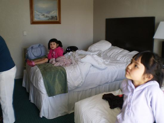 Cannery Row Inn: Lexi & Phoebe in the room