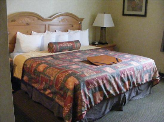 Best Western Plus Revere Inn & Suites: King Size Bed