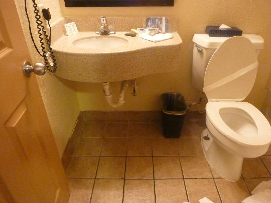 Emerald Coast Inn & Suites: Small bathroom (especially the sink area)