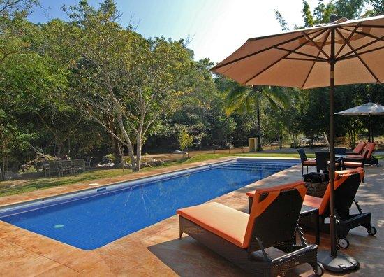 Villa Azalea - Luxury B&B: Elegante alberca.