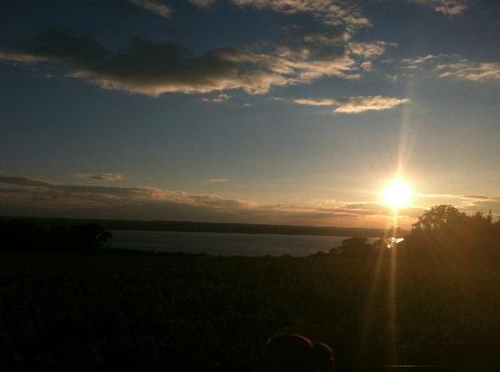 Ventosa Vineyard: sunset at ventosa