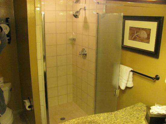 BEST WESTERN Carmel's Town House Lodge: We love a walk in shower
