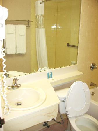 Best Western The Garden Executive Hotel : Bathroom