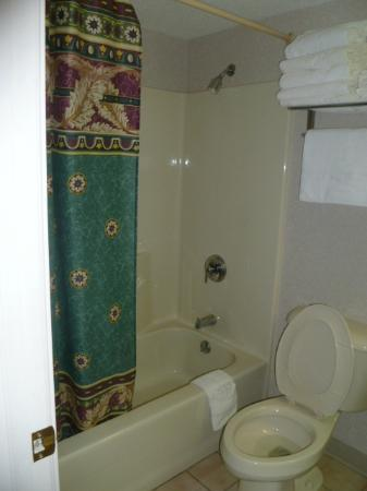 Parkside Inn -  Bridgeside: bathtub