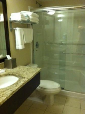 Hotel 540: bathroom, toilet really close to shower door
