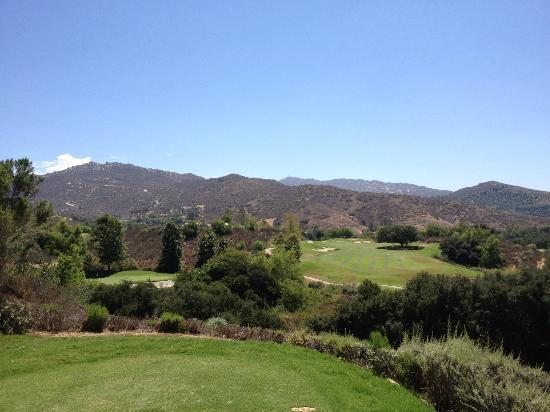 高爾夫俱樂部照片