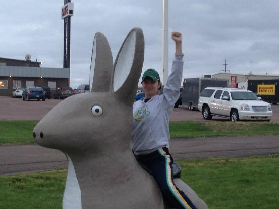 Thunderbird Lodge Mitchell: Got to love a giant rabbit!