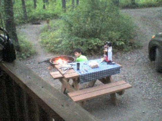 Timber Wolf Resort: Small picnic table and fire pit in front of the cabin.