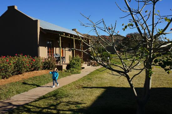 Thabile Lodge: onze lodge
