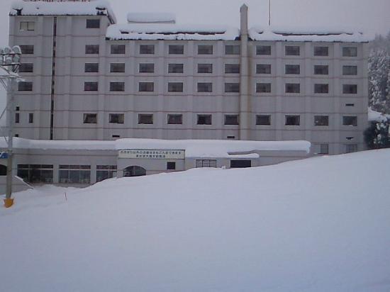 Yuzawa Toei Hotel: ゲレンデからの外観