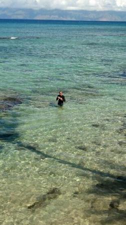 good snorkeling in the morning behind hono koa