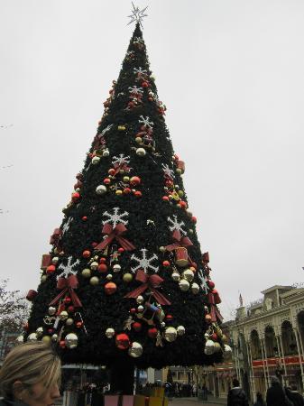 Alberi Di Natale Decorati Foto.L Albero Di Natale Picture Of Disneyland Paris Marne La