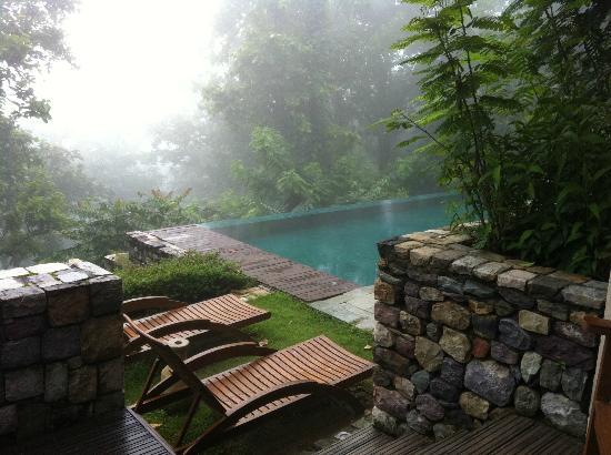Narendranagar, India: 部屋のプール