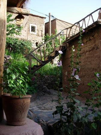 Douar Samra : jardin