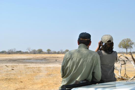 Bomani Tented Lodge: Bird Watching