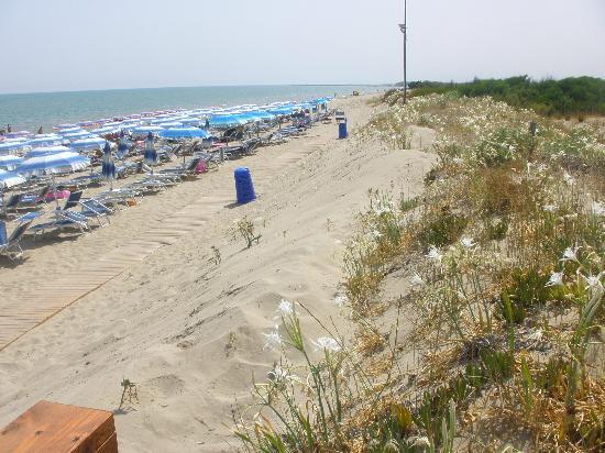 Hotel Palatinum: la spiaggia convenzionata con l'Hotel