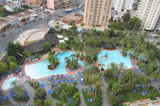 Melia Benidorm: ¡¡ pedazo piscina !!
