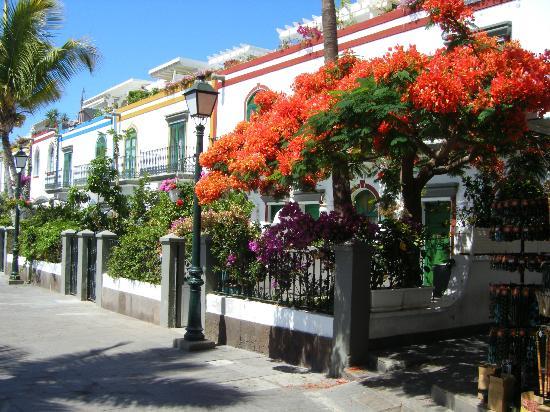 Morgan picture of bahia blanca puerto rico tripadvisor - Bahia blanca puerto rico ...