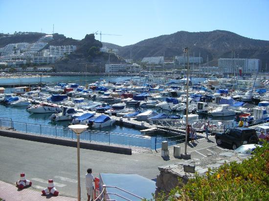 Puerto rico harbour picture of bahia blanca puerto rico tripadvisor - Bahia blanca puerto rico ...