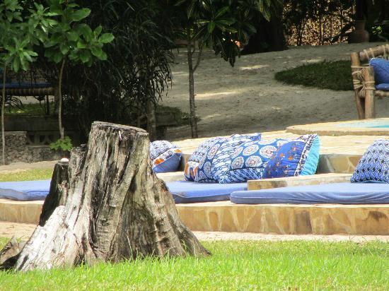 Kinondo Kwetu: relaxing