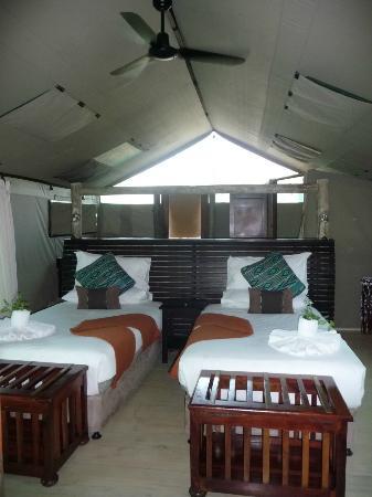 Pom Pom Camp: interno della tenda