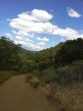 Almaden Quicksilver County Park: trail near reservoir