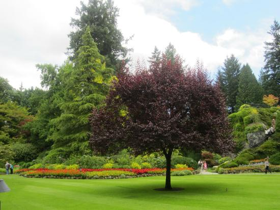 Butchart Gardens: Vista del jardín